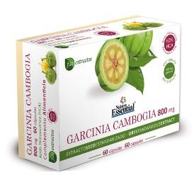 Garcinia cambogia - 800 mg - 60 cap.