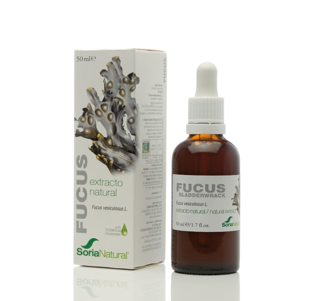 Extracto Fucus - 50 ml