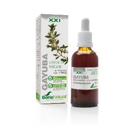 Extracto XXI - Gayuba - 50 ml